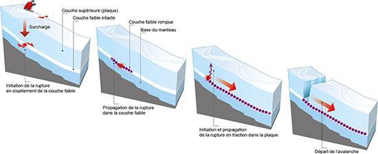 Infographie déclenchement d'une avalanche de plaque