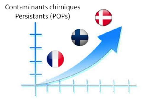 Les niveaux de concentrations des contminants chimiques recherchés (polluants organiques persistants de type dioxines, polychlorobiphényles, retardateurs de flamme polybromés) apparaissent globalement inférieurs dans les prélèvements de lait maternel collecté chez des mères Françaises par rapport à ceux observés dans des prélèvements issus de mères scandinaves. Les proportions relatives de ces différents contaminants diffèrent d'un pays à l'autres, avec notamment un rapport PCB/dioxines plus élevé en France