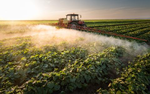 pulvérisation de pesticide dans un champ