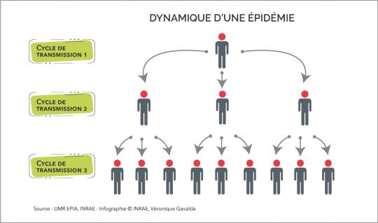 Afficher l'infographie sur la contagiosité d'une maladie