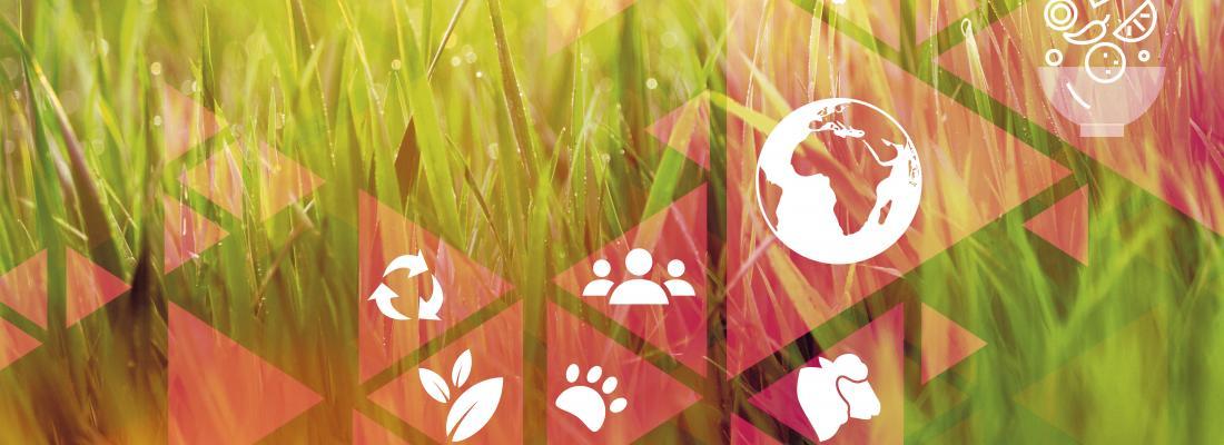 illustration Dossier de presse : One Health, une seule santé pour la Terre, les animaux et les Hommes