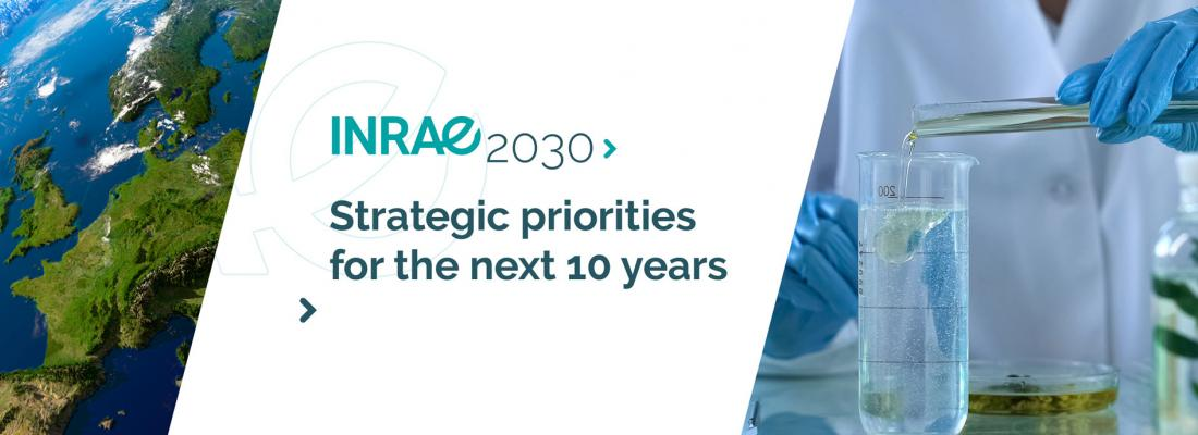 illustration Launch of INRAE2030: strategic priorities for the next 10 years