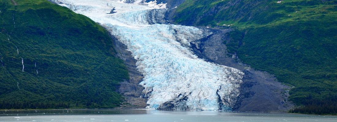 illustration Le changement climatique modifie la biodiversité autour des glaciers