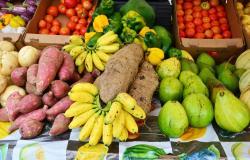 """Accéder à l'article """"Des recommandations pour une meilleure alimentation en Outre-mer"""""""