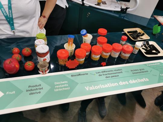 SIA 2020 Valorisation des déchets de tomate ou pomme en élastomère