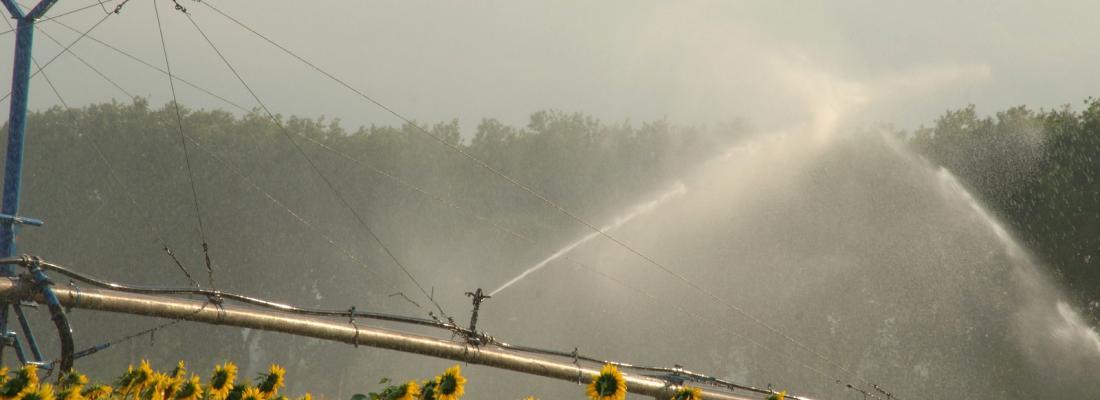 illustration Une plateforme pour optimiser l'irrigation de la prise d'eau jusqu'à la plante