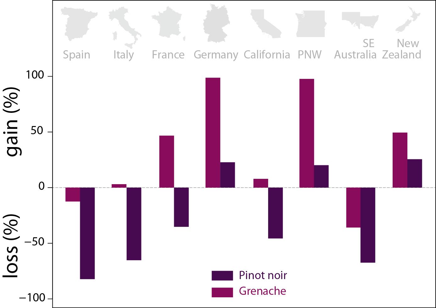 Exemple de gains et de pertes de surface viticoles dans les principaux pays producteurs de vin pour deux cépages, le Pinot noir (violet) et le Grenache (rouge), dans un scénario de réchauffement à 2°C