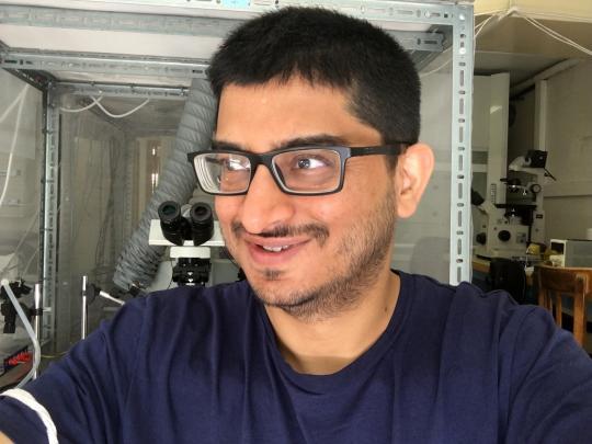 illustration Abhishek Chatterjee, explorer of insect senses