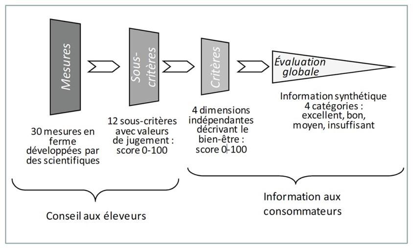 Evaluation BEA welfare quality