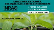 Postes ouverts aux concours externes en Pays de la Loire