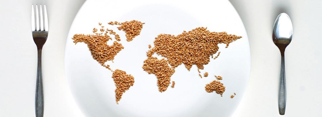 illustration [Infographie] Un scénario d'alimentation durable pour la planète