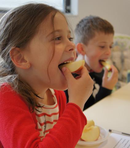 Identifiant scientifique Alimentation Goût Sensorialité - Centre INRAE Bourgogne-Franche-Comté