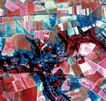 Cartographie des rendements de cultures céréalières à partir de traitements d'image.