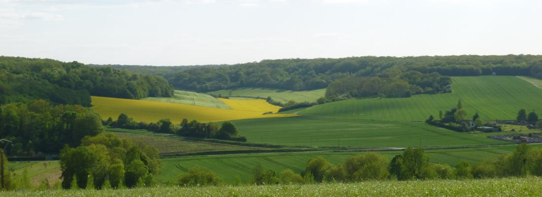 illustration Quelles nouvelles pistes pour faciliter la sortie des pesticides ?