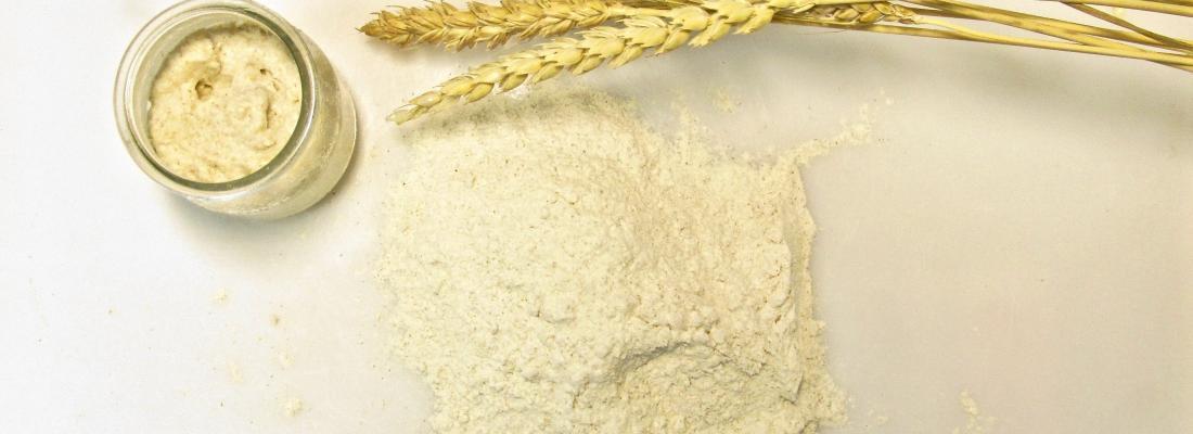illustration Domestication de la levure pour faire du pain