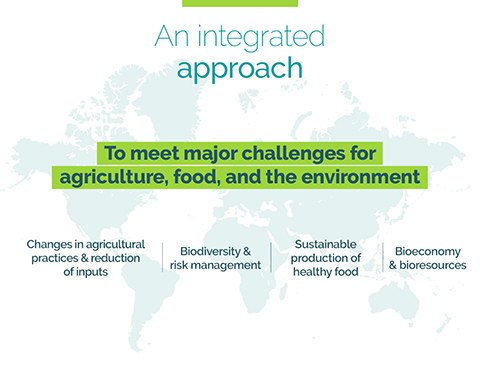 INRAE research themes : changes in agricultural pratices and reduction of inputs, biodivesrity and risk management, sustainable production of healthy food, bioeconomy and bioresources
