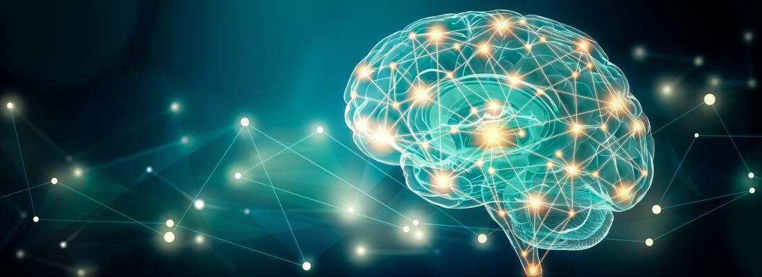 illustration Lien entre nutrition et cerveau : comment un déficit en oméga 3 chez la mère influence le développement comportemental des petits chez l'animal