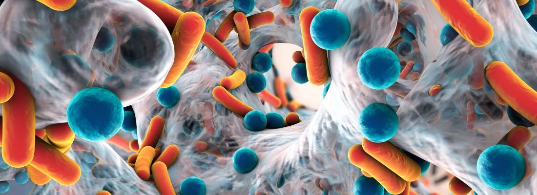 illustration Les bacteries ressemblent-elles à des saucisses cocktail ? Tout savoir sur les bactéries en 80 questions et 152 pages !