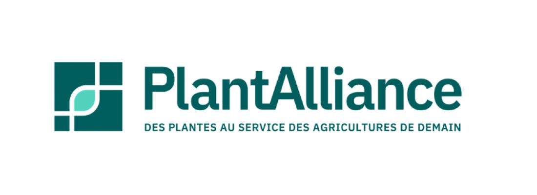 illustration PlantAlliance : un consortium public-privé en génétique végétale pour accélérer l'innovation agroécologique