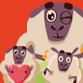 Lien vers le quiz moutons