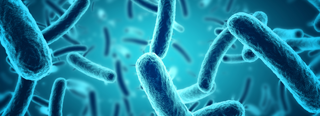 illustration NovoBiome et INRAE : un nouveau Laboratoire Partenarial Associé pour la recherche sur le microbiote intestinal humain