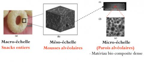 Structure multi-échelle des snacks
