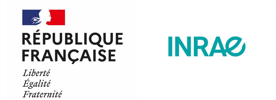 illustration Création d'une Direction Responsabilité Sociétale et Environnementale (RSE) à INRAE