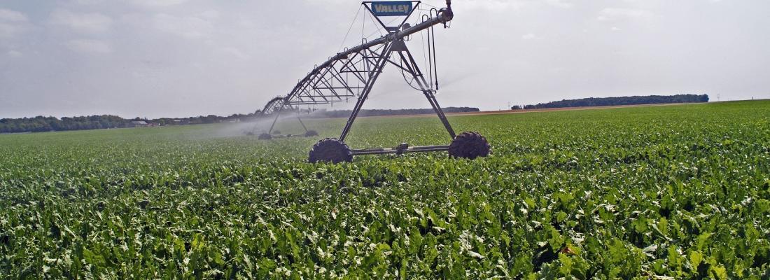 illustration Irrigation : un outil pour évaluer et encourager les économies d'eau