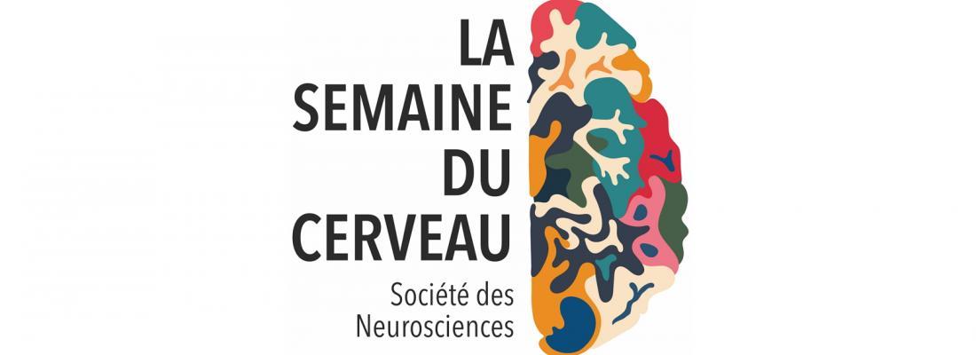 illustration 21e Semaine du Cerveau à Dijon