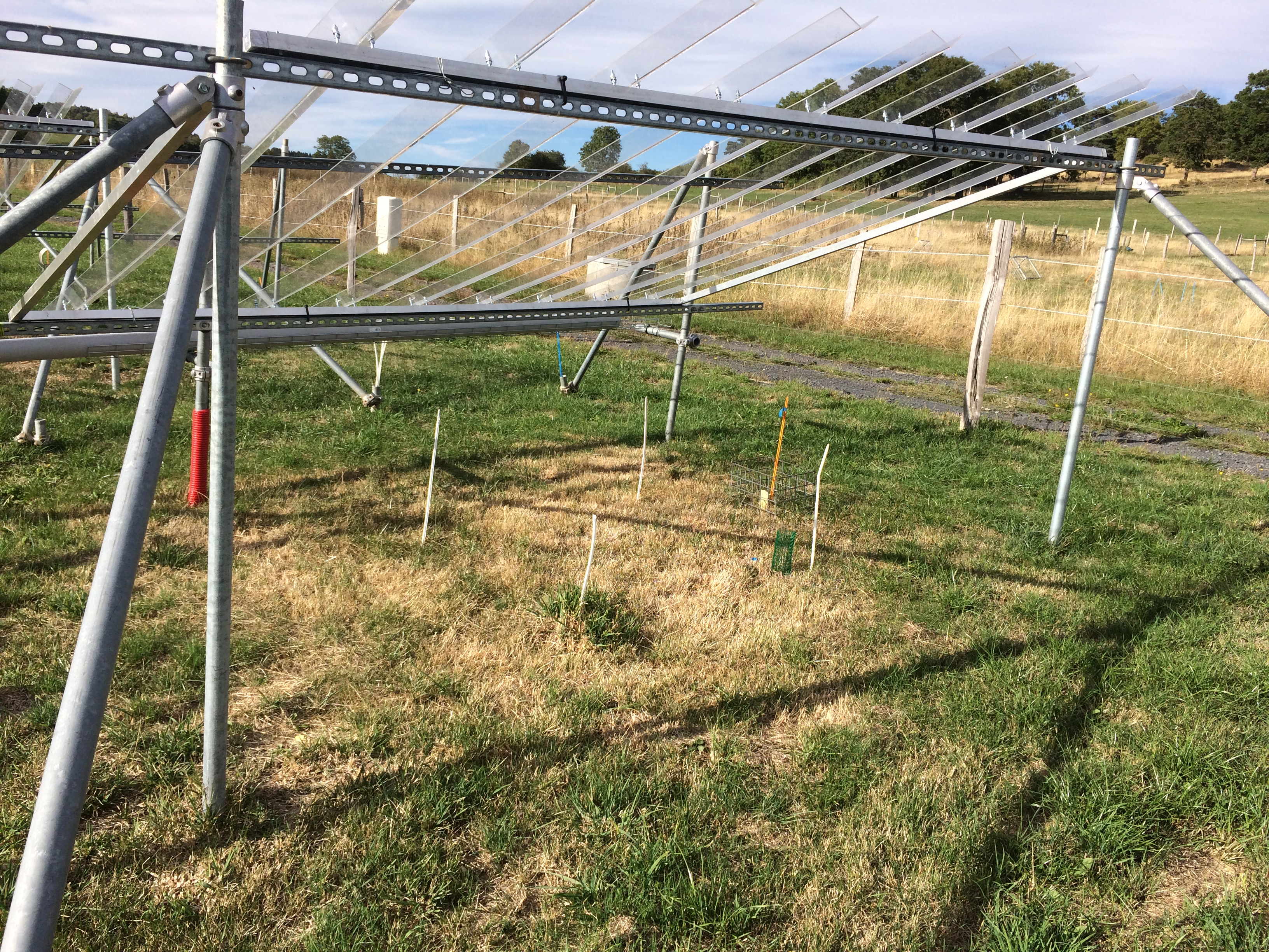 Dispositif expérimental Theix prairies et sécheresse
