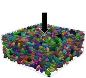 Simulation numérique de la compression d'un échantillon de neige imagé par tomographie