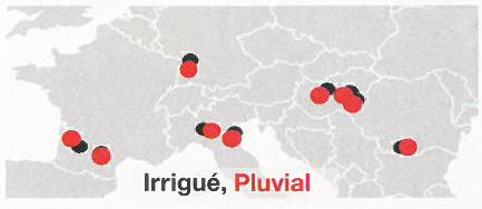 Réseau d'essais Amaizing en Europe
