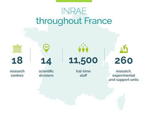 INRAE troughout France : 18 centers, 14 scientific divisions, 11500 full-time staff, 260 research, experimental and support units