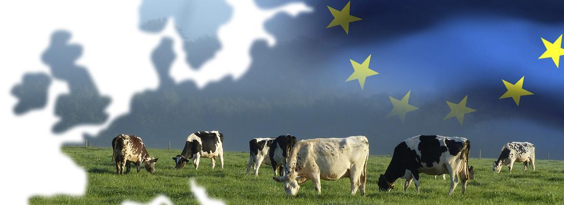 illustration PAC : pacte vert et élevage