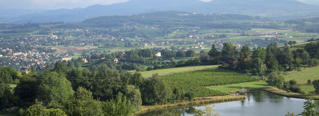 illustration Lancement de TETRAE en Auvergne-Rhône-Alpes - Appel à manifestation d'intérêt
