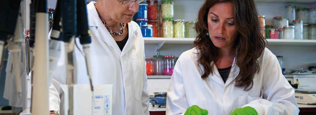 illustration Contaminants alimentaires : la recherche appuie sur l'accélérateur