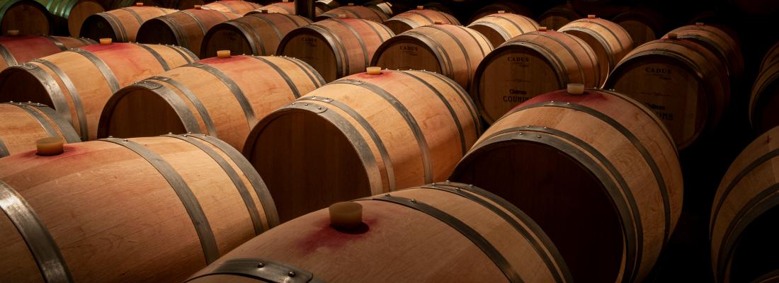 illustration Arômes du vin : la fermentation au cœur de l'innovation