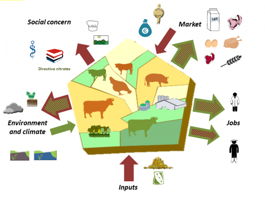 Bundle of services in grassland-dominant areas