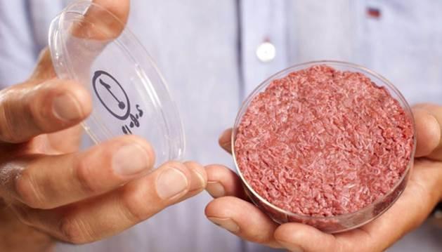 Steack in vitro