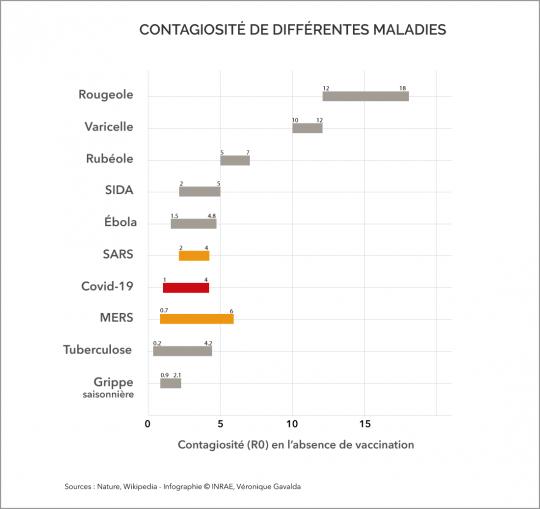 Afficher l'infographie sur la dynamique de contagion du Covid