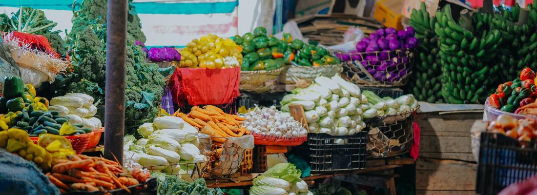 illustration Des recherches pilotées conjointement par INRAE et le Cirad apportent des résultats concrets pour la sécurité alimentaire et nutritionnelle mondiale