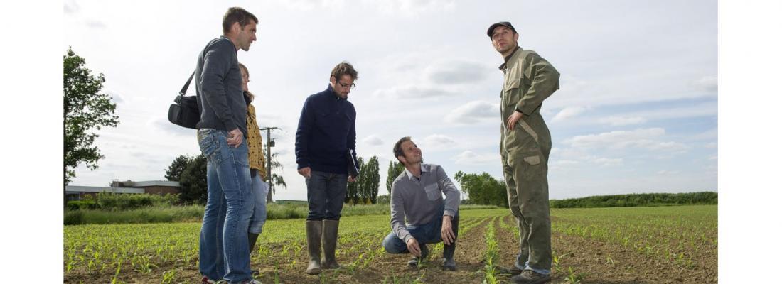 illustration H2020 IPMWorks - réduction de l'usage des pesticides - vers la mise en place d'un réseau européen de démonstration sur le modèle des fermes DEPHY