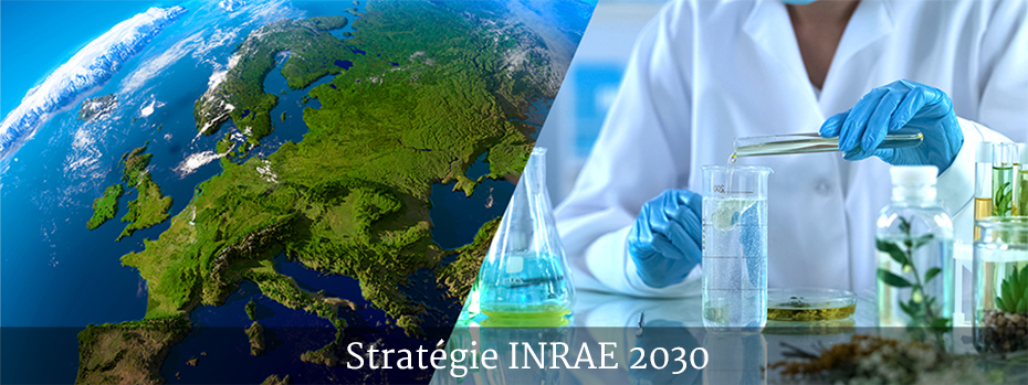 Liens vers la page INRAE 2030