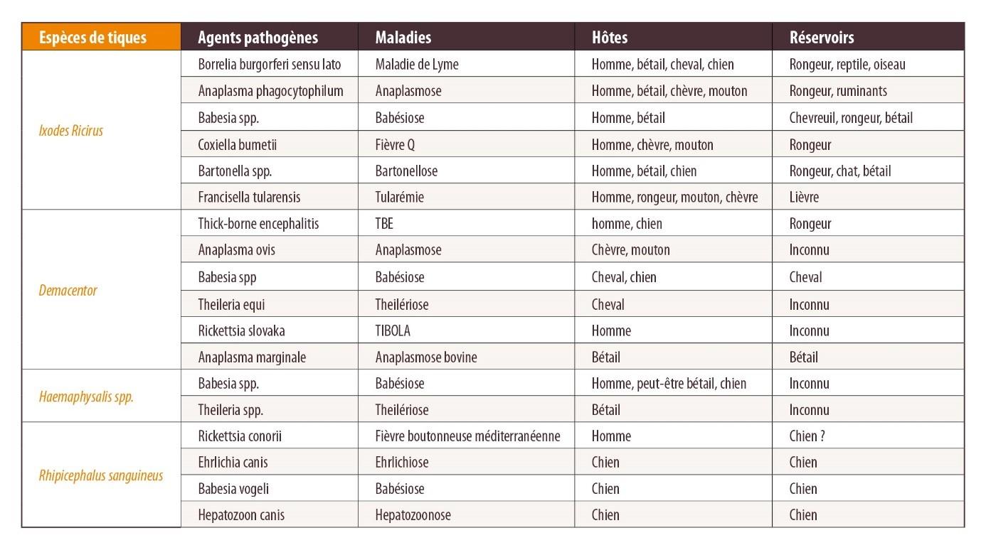 Tableau agents pathogènes et hôtes des tiques