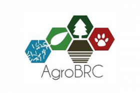 Logo AgroBRC
