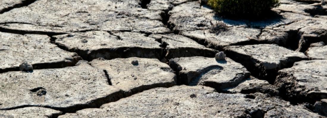 illustration Agriculture et sécheresse