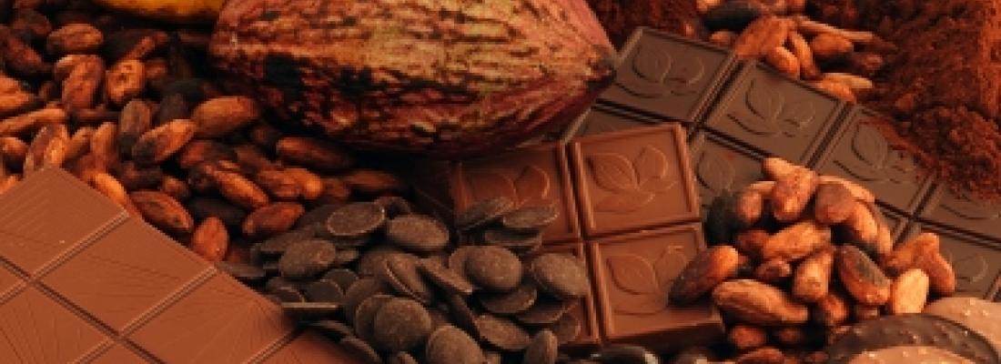 illustration Prédire la qualité organoleptique du chocolat à partir de la fève de cacao
