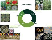 Ensemble de Ressources Biologiques (ERB)