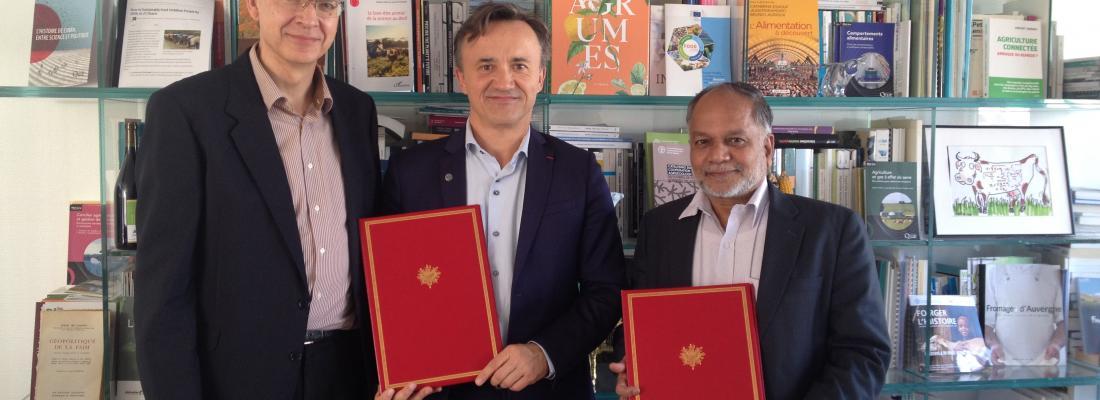illustration Inra en Inde : un nouveau LIA renforce la collaboration de recherche avec la BAIF pour le développement rural, l'environnement et la sécurité alimentaire