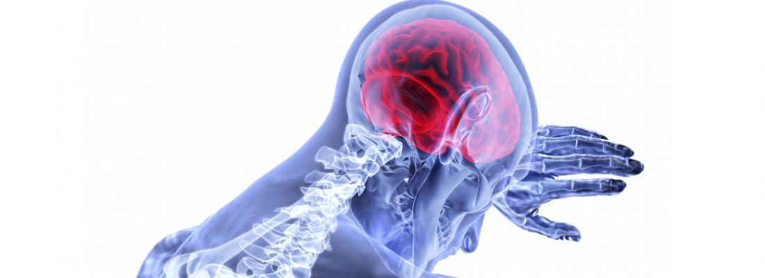 illustration Maladie de Creutzfeldt-Jakob sporadique : le prion n'est pas exclusivement confiné dans le système nerveux central